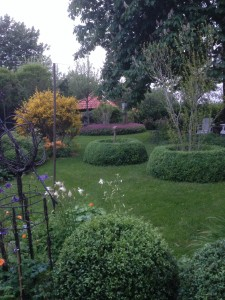 De mooie vormgeving van de tuin